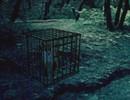 Dark Forest Fox
