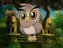 Lion Park Owl Escape