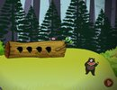 Bear Forest Escape