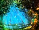 Hidden Fantasy Firefly