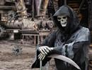 World of Skeletons